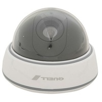 Dummy Dome Camera Kit with Flashing Sign
