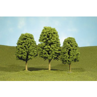 3 4 DECIDUOUS TREES (3)