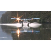 EDR-117C H9 BEAVER LITESYS COMPLETE SYSTEM FOR GIANT-SCALE DHC-2 BEAVER